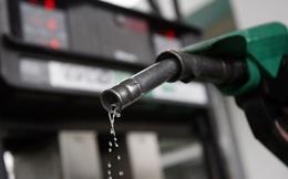 CNN: Giá dầu sẽ không bao giờ trở lại được thời hoàng kim?