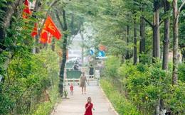 Ảnh, clip: Từ con mương ngập ngụa rác thải đến tuyến đường bộ cực xanh mát giữa lòng Thủ đô