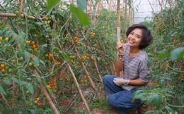 Từ bỏ chức vụ hiệu trưởng để theo đuổi công việc trồng rau trên Đà Lạt, cô chủ The Liittle Pine: Làm nông cũng như làm giáo dục