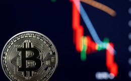 """Bitcoin """"ăn may"""" giữa khủng hoảng, có nên mua vào?"""