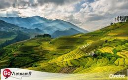 Giám đốc công ty lữ hành Hanoitourist: Đây là thời điểm có thể tập hợp tất cả các nguồn lực lại nhằm khôi phục hoạt động du lịch