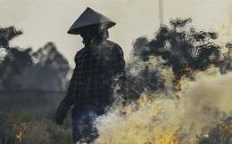 Người dân Hà Nội đốt rơm rạ khói bay mù mịt giữa cái nóng gần 40 độ, khiến không khí ngày càng ô nhiễm