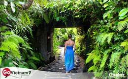 Wellness tourism: Mô hình du lịch đầy tiềm năng tại Việt Nam nhưng không phải ai cũng biết