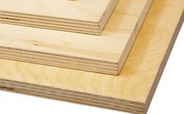 Mỹ khởi xướng điều tra chống lẩn tránh thuế với sản phẩm gỗ dán từ Việt Nam