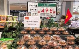 Vải thiều xuất khẩu sang Nhật, giá nửa triệu nhưng mới 1 ngày đã bán hết veo