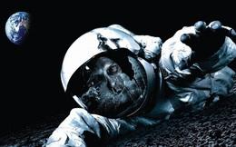 Đây là điều sẽ xảy ra với cơ thể con người nếu bị ném ra ngoài vũ trụ mà không có bộ đồ bảo hộ