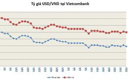 Doanh nghiệp Việt loay hoay ứng phó rủi ro tỷ giá