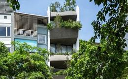 Ngôi nhà 49m2, 3 thế hệ cùng chung sống tại Hà Nội được giới thiệu trên báo Mỹ