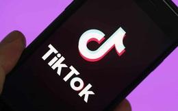 Đảo ngược công nghệ của TikTok, kỹ sư phần mềm kinh ngạc vì mức độ thu thập thông tin người dùng của ứng dụng
