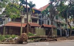 Chủ biệt thự đô thị kiểu mẫu Hà Nội 'chơi ngông' tự chặt cây, lát vỉa hè 'đế vương'