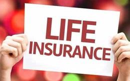 Làm tư vấn bảo hiểm nhân thọ mới vào nghề cần lưu ý những gì?