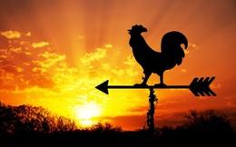 112 ngày dậy sớm từ 3h50 sáng, tôi như sống thêm một cuộc đời mới: Không phải để thành công, tôi chỉ muốn có cơ hội YÊU THƯƠNG mình nhiều hơn