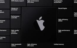 Sốt sắng đàm phán mua lại hãng chip ARM ngay từ đầu, cuối cùng Apple phải từ bỏ vì lý do này