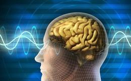 """Đây là """"2 loại nước - 2 món ăn"""" dễ khiến bộ não bị """"tàn phá"""" nặng nề, không phòng ngừa sẽ tăng nguy cơ sa sút trí nhớ, tổn thương não"""