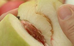 Cùng được cho 1 loại trái cây, cách ăn của 2 người phụ nữ đưa họ đến 2 cuộc đời khác biệt