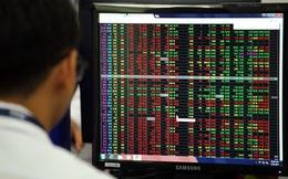 20 năm lăn lộn cùng chứng khoán Việt Nam, một nhà đầu tư cá nhân bật mí bí quyết chiến thắng khi thị trường hoảng loạn, thu lợi nhuận 20-40% sau 3-6 tháng