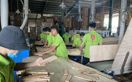Bị áp thuế 0% thành 25%, doanh nghiệp gỗ kêu cứu vì nguy cơ phá sản
