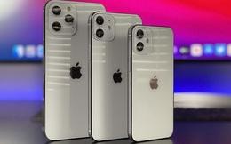 Apple sẽ ra mắt iPhone 12 rẻ hơn vào đầu năm 2021