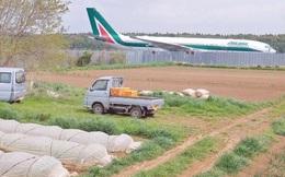 Lão nông từ chối 40 tỷ đồng để trồng rau giữa sân bay quốc tế