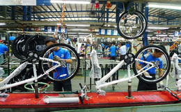 Nghịch cảnh mùa dịch: Trong khi nhiều doanh nghiệp phá sản, đóng cửa, hãng xe đạp lớn nhất thế giới Giant sản xuất không kịp để bán
