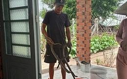 Gia cảnh khó khăn của người đàn ông cầm đầu rắn hổ mang vào bệnh viện cấp cứu: Bị tai nạn giao thông, đi bắt rắn chạy ăn từng bữa
