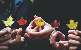 Bí quyết để duy trì một tình bạn bền vững: Thân nhau đến đâu, vẫn phải nể nhau mà giữ chừng mực!