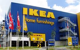 Bí quyết nào đưa IKEA thành nhà bán lẻ nội thất lớn nhất thế giới
