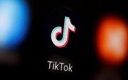 Reuters: VNG chuẩn bị khởi kiện TikTok, đòi bồi thường 221 tỷ đồng