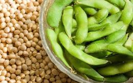 7 loại protein hoàn chỉnh không có nguồn gốc từ thịt đỏ: Rất tốt cho sức khỏe toàn diện