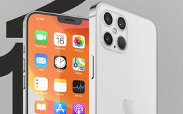 Lộ hình ảnh xác nhận Apple sẽ bán iPhone 12 mà không có củ sạc
