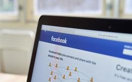 Tầm quan trọng của Facebook cá nhân trong quá trình tìm việc