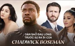"""Dàn sao Avengers, Ariana Grande và loạt nghệ sĩ Việt đau lòng trước sự ra đi của """"Black Panther"""" Chadwick Boseman"""