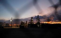 Dầu thô hay dầu mỡ thải - Lựa chọn nào cho ngành lọc dầu Mỹ?