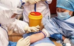 Máu của những bệnh nhân COVID-19 khỏi bệnh: Món quà vô giá cho y học và cuộc đua tìm kiếm thuốc cho đại dịch