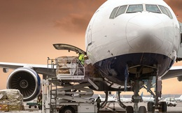Từ Vietnam Airlines đến ACV đều lỗ nặng nhưng một số công ty logistics hàng không vẫn sống khỏe lãi cao