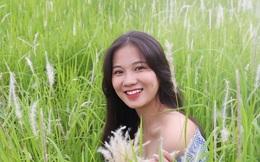 Những triền đê phủ trắng cỏ tranh ở Hà Nội