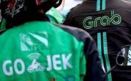 Softbank thúc ép Grab và Gojek sáp nhập?