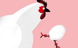 Cơn sốt hợp đồng tương lai trứng gà ở Trung Quốc
