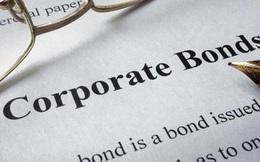 Một công ty tăng vốn từ 100 triệu đồng lên 1.370 tỷ đồng, phát hành 500 tỷ đồng trái phiếu cách nhau 1 tháng