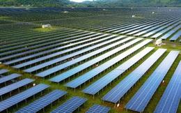 Những điều bất ngờ về ông chủ dự án điện mặt trời cung cấp cho cả miền Tây
