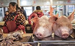 """Dự báo kho dự trữ thịt lợn bí mật của Trung Quốc sắp cạn kiệt, chỉ còn """"trụ"""" được 3 tháng"""