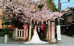 Khuyến khích kết hôn, Nhật Bản tặng thêm tiền cho cặp đôi mới cưới
