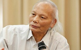 Giáo sư Nguyễn Mại: Thị trường bất động sản năm nay suy giảm, ảnh hưởng đến 50 ngành liên quan