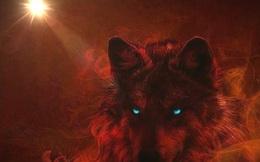 Người thành công phải tư duy như sói đầu đàn: Không chỉ độc ác với người khác, mà phải độc ác với chính mình