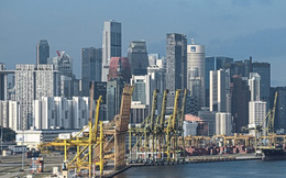 Đối mặt với suy thoái kinh tế, 3M, Microsoft và DBS tại Singapore làm gì để thích nghi?