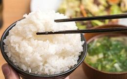 """Gia đình 4 người cùng mắc ung thư vì một chất độc hạng nhất dễ """"xâm nhập"""" vào mâm cơm: Thường có mặt trong 6 món ăn, vật dụng nhưng bạn không hề biết"""
