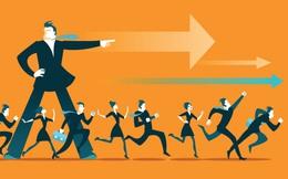 5 bí quyết để xây dựng đội nhóm hiệu quả