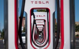 Giới bán khống cổ phiếu Tesla mất trắng 38 tỷ USD trong năm 2020