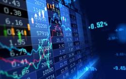 Gần 500 cổ phiếu đầu tư trong 1 tuần hơn gửi tiết kiệm cả năm