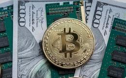 Tiến sát mốc 42.000 USD, động lực chính đằng sau đà tăng bùng nổ của Bitcoin cùng các đồng tiền số khác là gì?